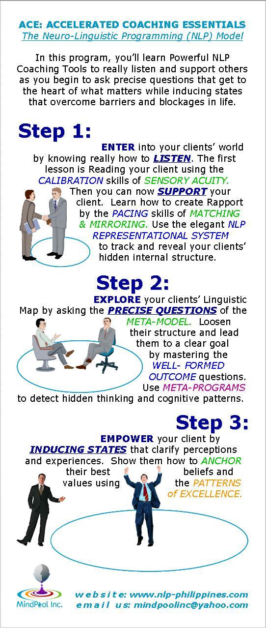 nlp mastery the meta programs pdf